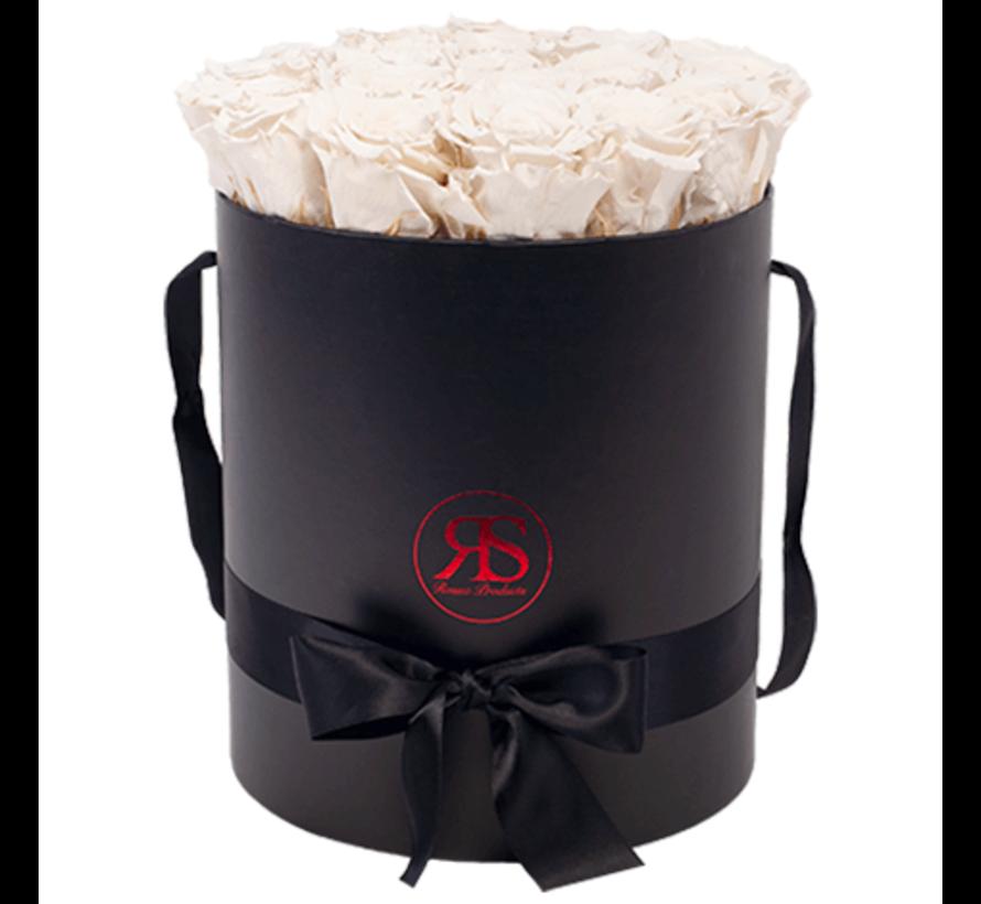 Rosuz Flowerbox Longlife Aisha Weiß