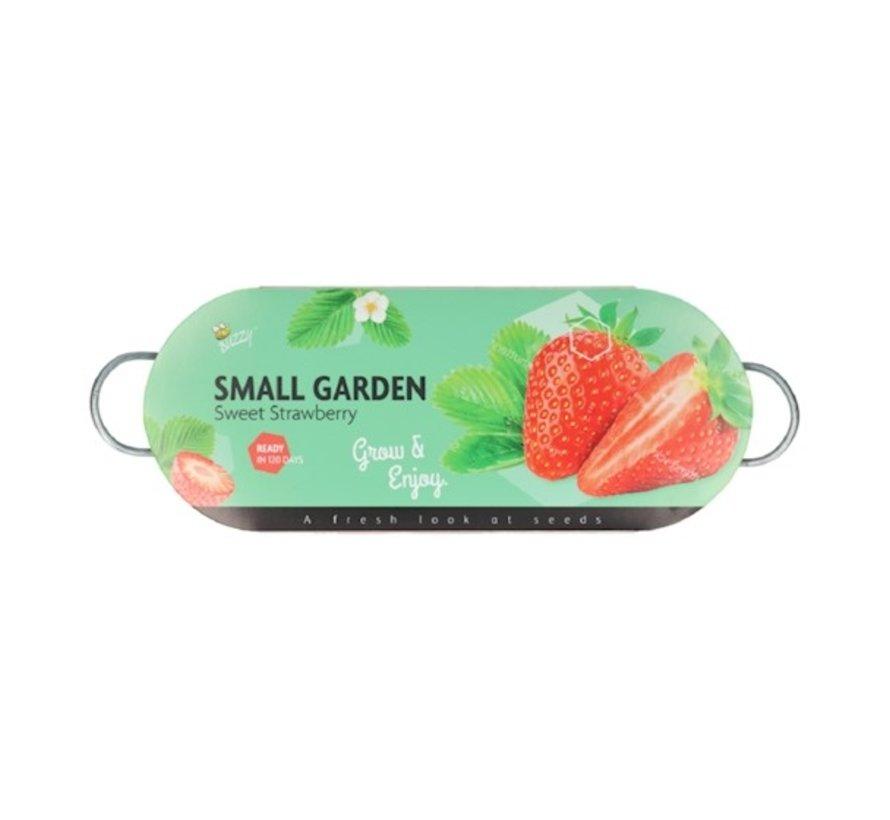 Buzzy Fensterbankgarten Klein mit Erdbeersamen