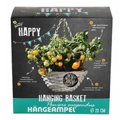 Buzzy Happy Garden Hanging Basket Dwarf Cherry Tomato