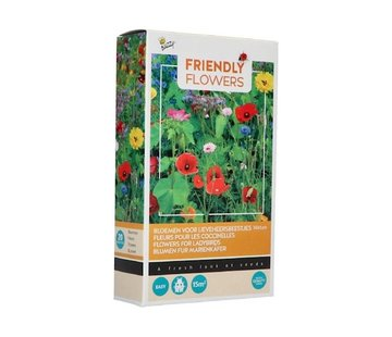 Buzzy Friendly Flowers Flower Mix for Lady Birds 15m²