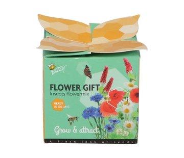 Buzzy Flower Gift Bienen und Schmetterlinge Blumenmischung