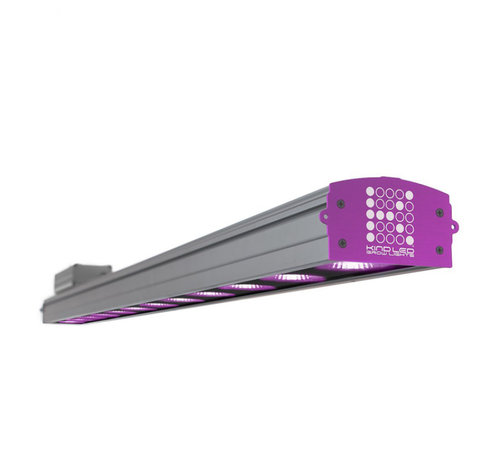 Kind Led Kweeklamp XC150 LED 150 Watt