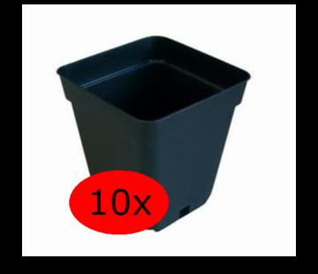 Wachstums Töpfe Quadrat 0.5 Liter 9x9 cm Schwarz 10 Stück