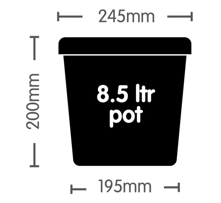 AutoPot Auto 8 Potten 8.5 Liter Tray Water Systeem 120x53 cm