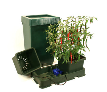 AutoPot Easy2Grow 2 Pots Watering System Starter Kit incl. Tank