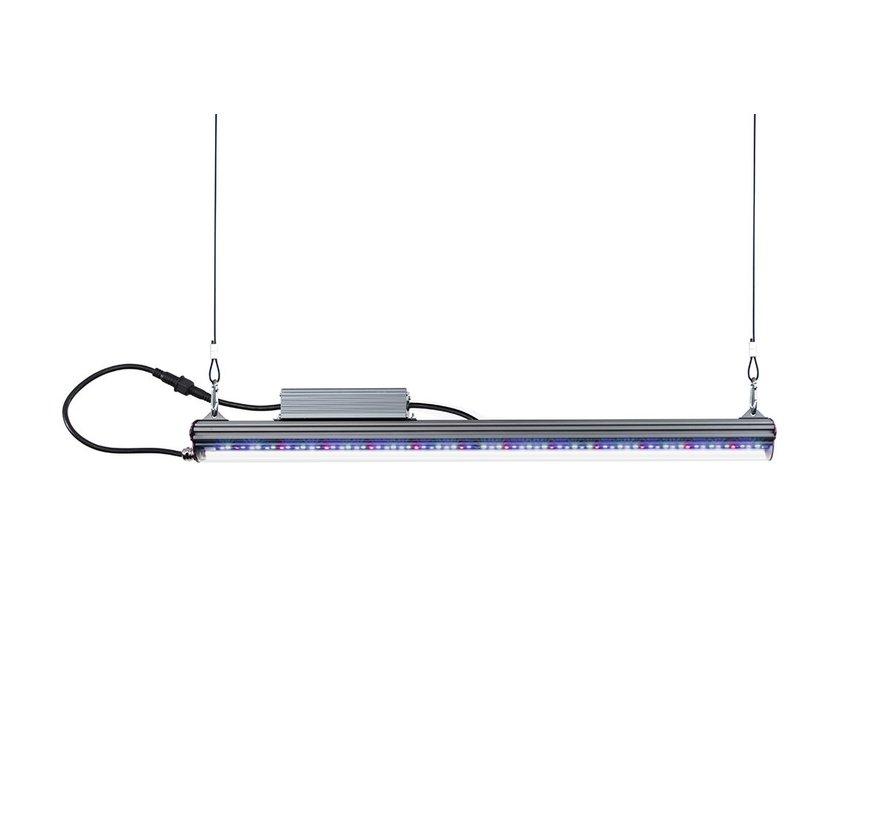 Kind Led Kweeklamp X80 LED 80 Watt