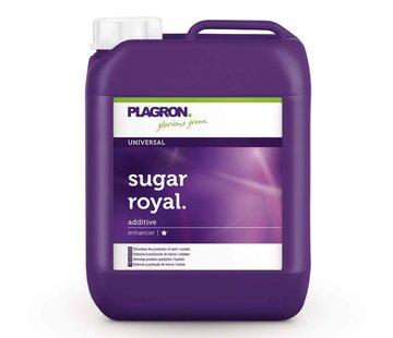 Plagron Sugar Royal Bloeistimulator 5 Liter