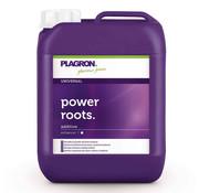 Plagron Power Roots Wortelstimulator 5 Liter