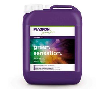 Plagron Green Sensation All-in-1 Blütenstimulator 5 Liter