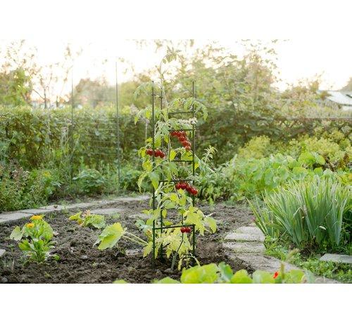 Nature Tomato Stand Triangle 3 Poles 150 cm 12 Cross Poles