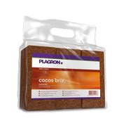 Plagron Cocos Brix Sustrato 7 Litros Caja de 24 Unidades