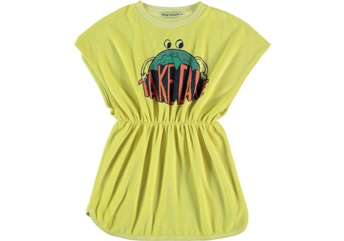 Fresh Dinosaurs Fresh Dinosaurs Take Care Dress - limelight