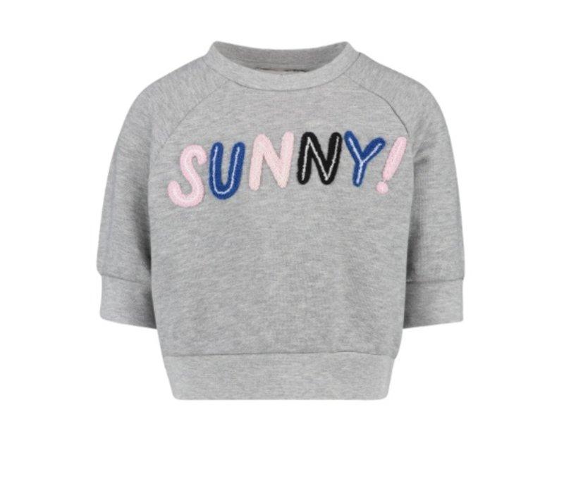 CKS Romy Sweater Grey Miel