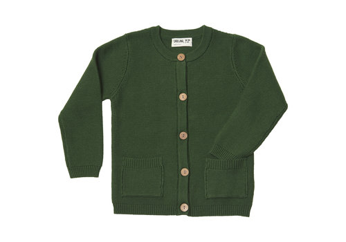 CarlijnQ CarlijnQ Knit Basics Cardigan with Pockets Green