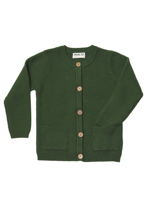 CarlijnQ CarlijnQ Knit Basics Cardigan with Pockets Green