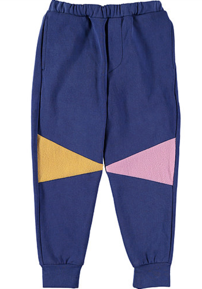 Fresh Dinosaurs Pants Triangle Limoges
