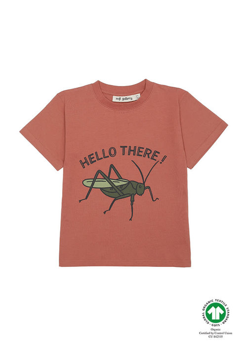 Soft Gallery Soft Gallery Asger T-shirt Baked Clay Grasshopper