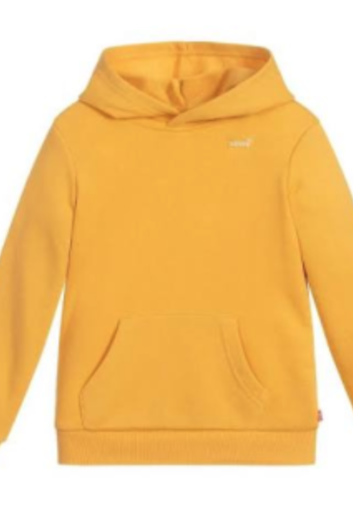 LEVI's Batwing Chest Hit Hoodie Golden Apricot