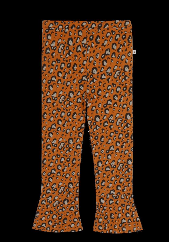 Ammehoela Loua Leopard