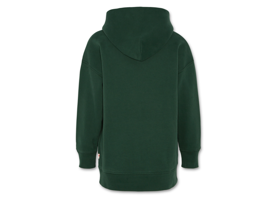 AO76 Hoodie Oversized Sweater Green