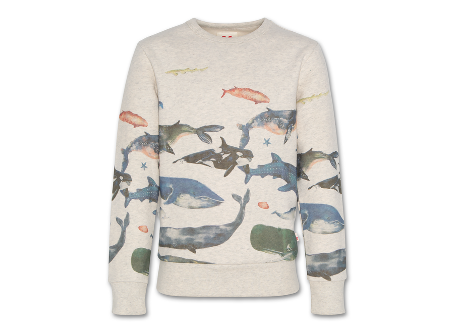 AO76 C-Neck Sweater Sea Oyster