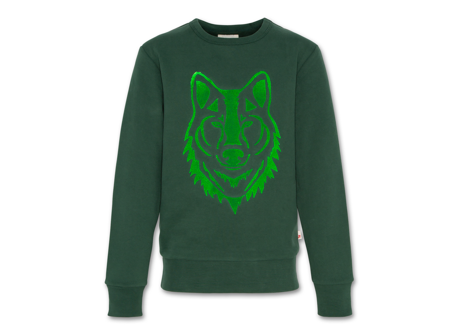 AO76 C-Neck Sweater Wolf Green