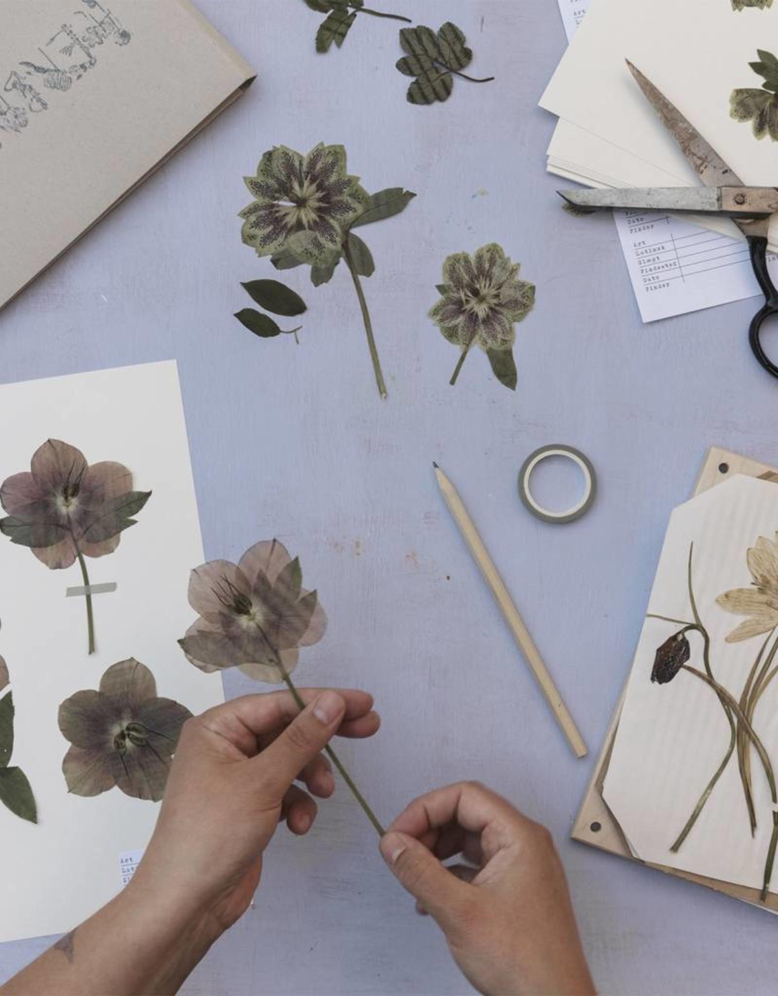 Kit company Flower press Kit