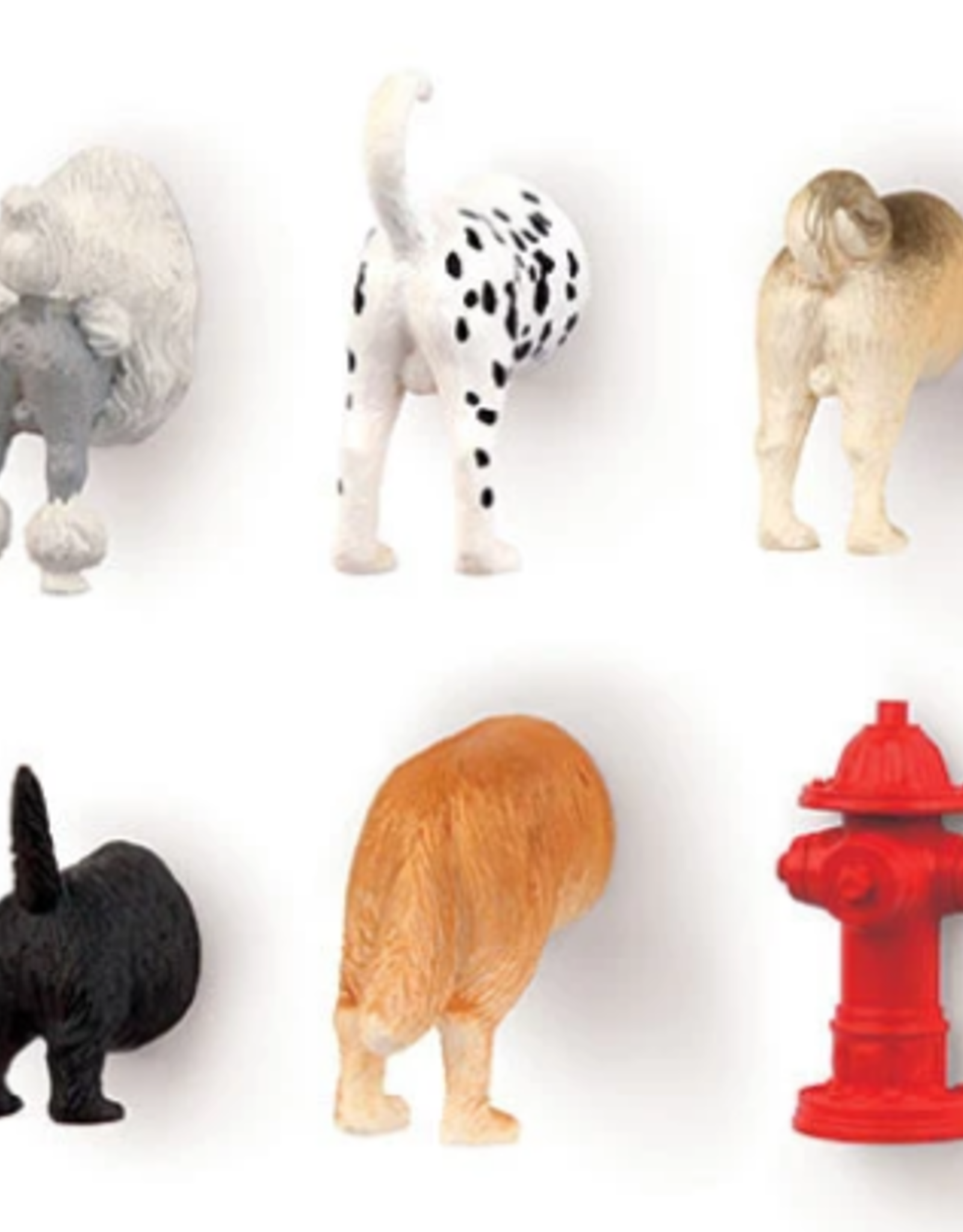 Kikkerland Dog butt Magnets