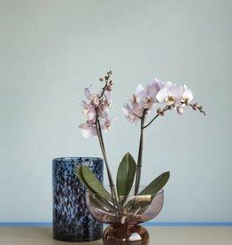 Hübsch Orchidee vase