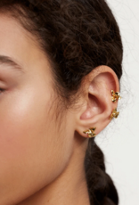 PD Paola Narcise gold earrings