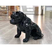 DECO PITBULL A259 BLACK