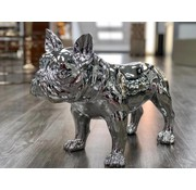 DECO PITBULL A216 GREY