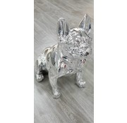 DECO PITBULL A258 GREY