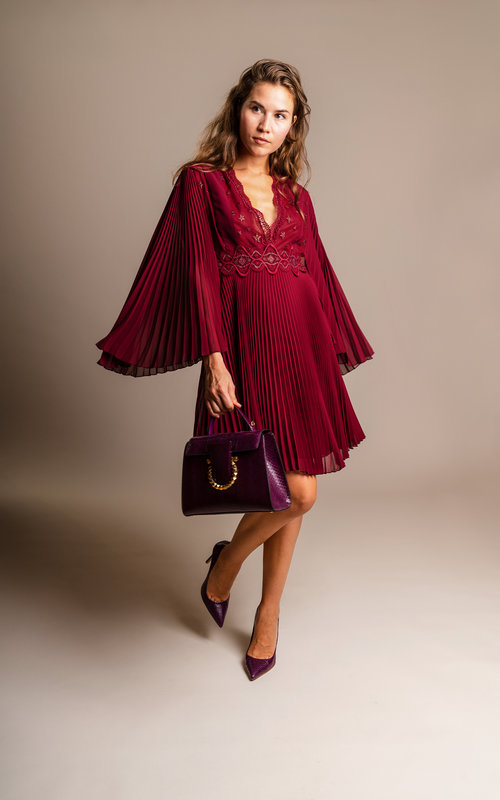 Plum embroidery dress
