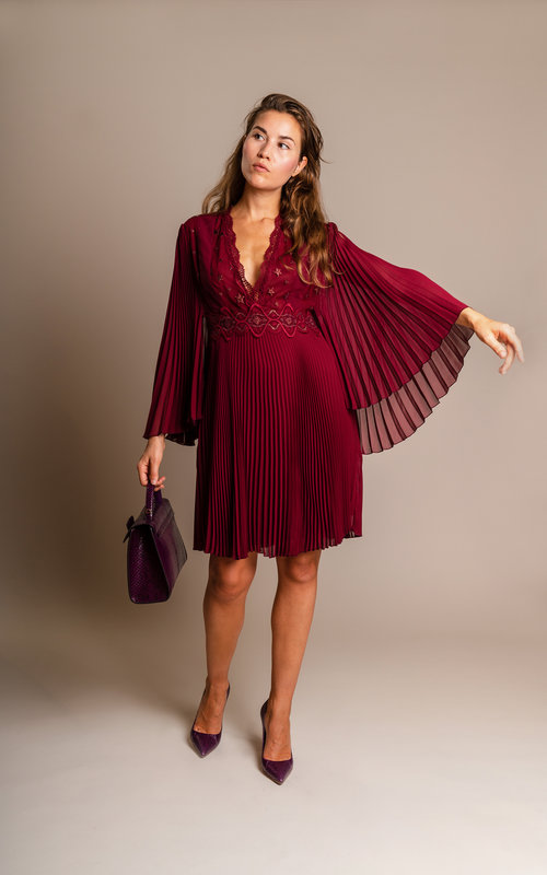 Giamba Plum embroidery dress