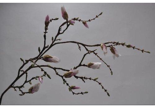 Fine Asianliving Magnolia branch pink 125 cm