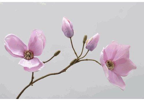 Fine Asianliving Magnolia Tak 68 cm