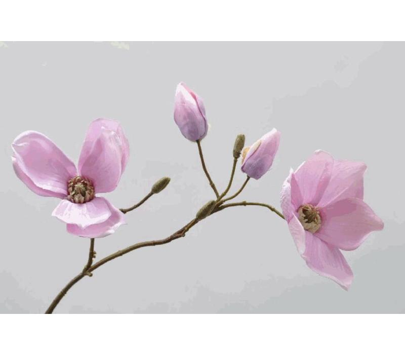Magnolia Tak 68 cm
