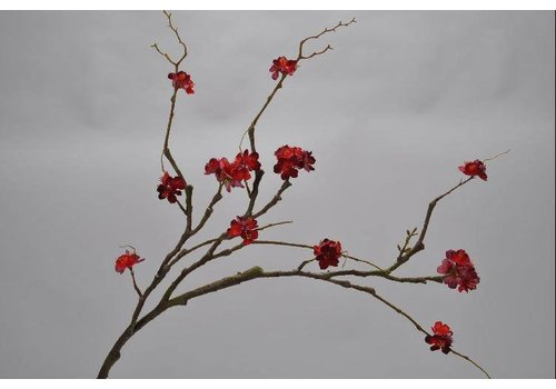Fine Asianliving Blossom branch red 80 cm