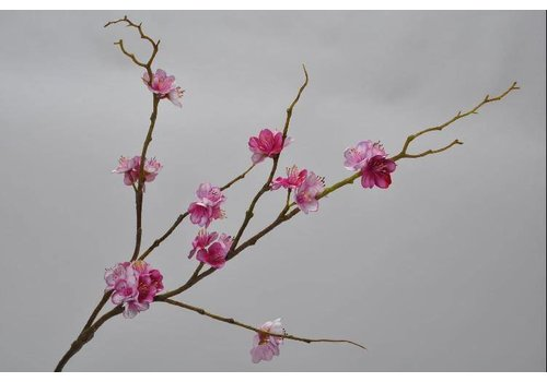 Fine Asianliving Bloesem Tak Roze 61 cm