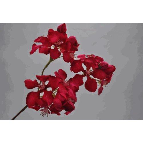 Bloesem Steker Beauty 41 cm