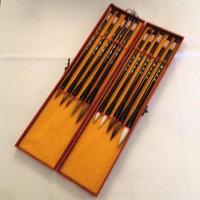 Chinese Kalligrafie Set Penselen 10 in Houten Doosje