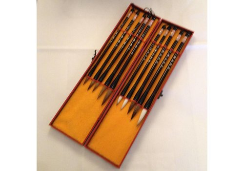 Fine Asianliving Chinese Calligraphy Set Brushes 10 in Wooden Box