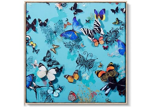 Fine Asianliving Oriental Painting Various Butterflies Blue Background