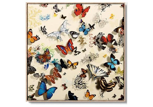 Fine Asianliving Oriental Painting Various Butterflies White Background