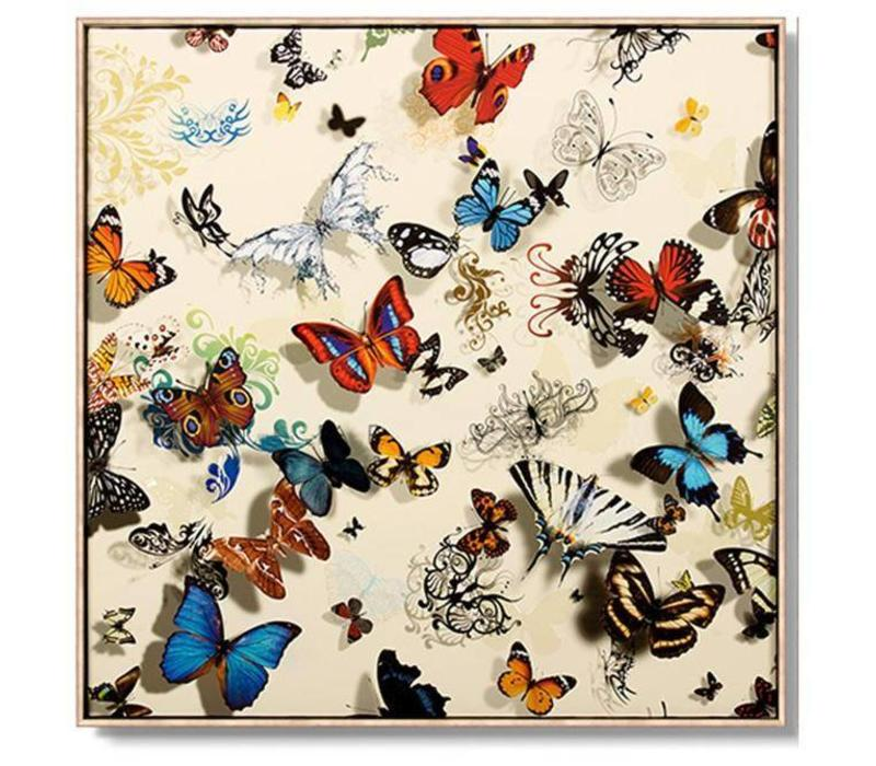 Oriental Painting Various Butterflies White Background