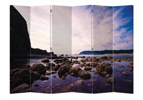 Fine Asianliving Fine Asianliving Room Divider Privacy Screen 6 Panel Rocks in Sea L240xH180cm