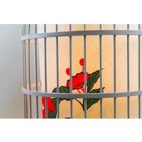 Lampe suspension chinoise cage à oiseaux