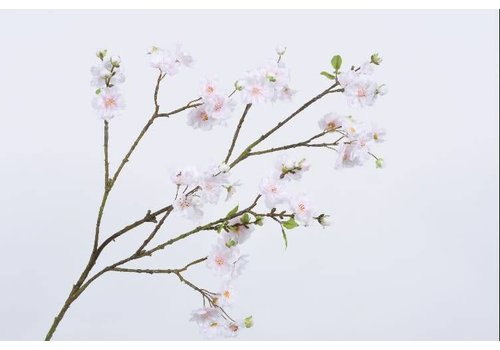 Fine Asianliving Boesem tak roze lt 104 cm