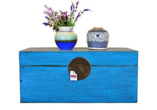 Fine Asianliving Antique Chinese Storage Trunk Hand Painted Blue